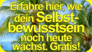 2016 Midlife-Crisis Altweidelbach